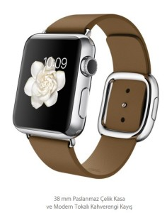 Apple Watch Klasik (10)