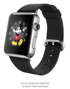 Apple Watch Klasik (6)